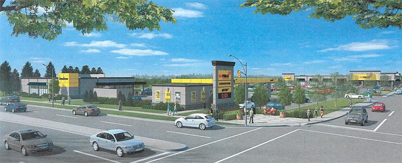 Health Food Store South Calgary