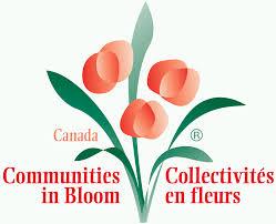 communities in bloom