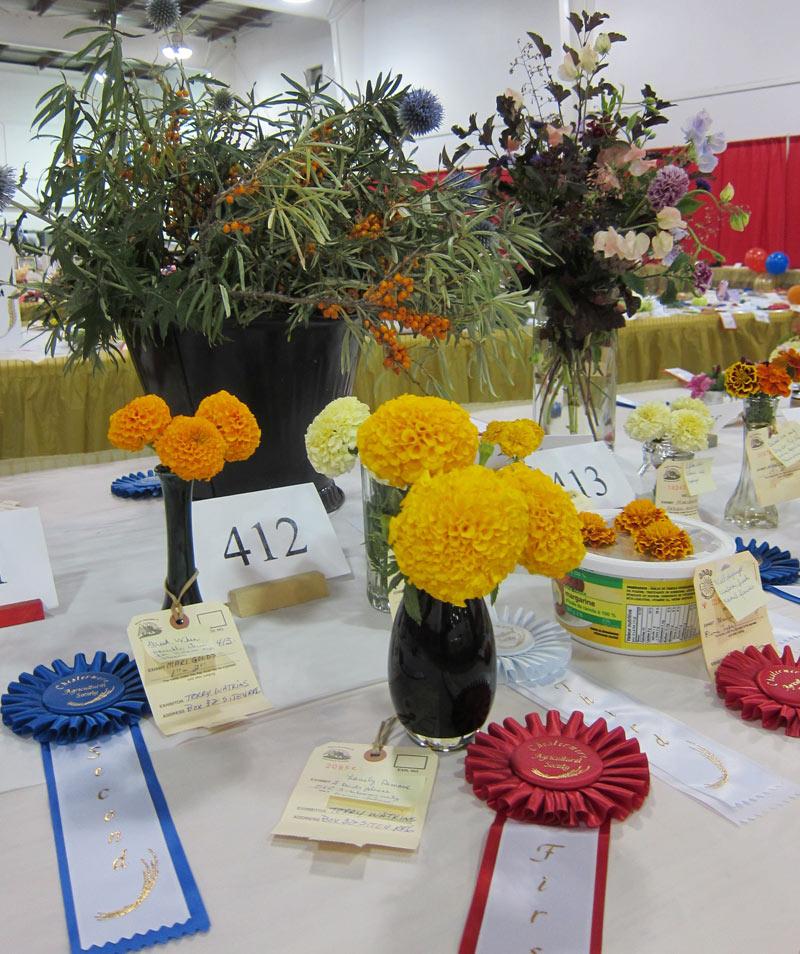 Garden-Competition-2011